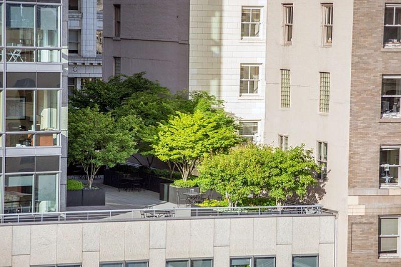 impermeabilizantes para terrazas opt